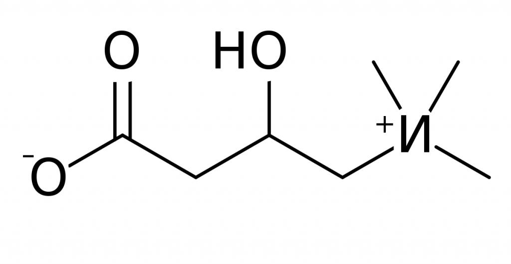 Bevanda Burn Out a base di carnitina utile per dimagrire: proprietà e informazioni